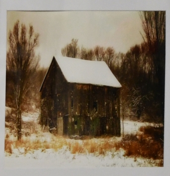 Donna Sherwood Tom's Barn1st place photo