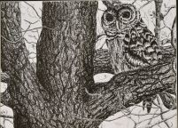 Emily Geist Owl Do It Later 2D youth